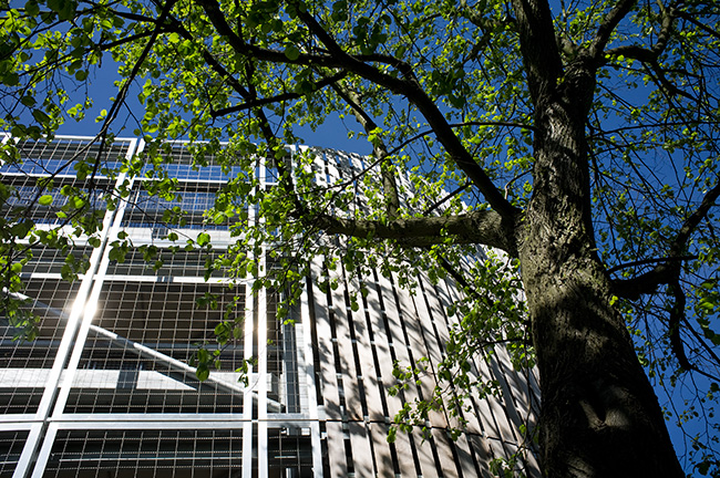 Car park at the Queen Elizabeth Hospital, Birmingham.